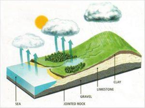 vizkorforgas